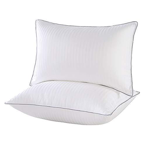 IMISSYOU 2er Set Kopfkissen , Hochwertig Mikrofaser gefüllte Kissen geeignet für Allergiker, 100% Baumwolle Kissen 51x66cm (1000g/per)