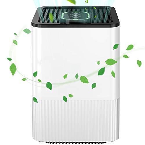 Luftreiniger Allergie mit Ionisator und H13-HEPA&Aktivkohlefilter 4-Schicht-Filtration Air Purifier mit LED Nachtlicht und 1/4/8 Timing-Off-Funktion für Allergiker,Raucher,Asthma,Haare,Pollen,Staub