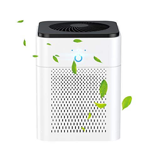 Luftreiniger, HEPA Filter Lonisator, Air Purifier 99,97% Filterleistung,3 Geschwindigkeiten USB Luftreiniger für Pollen Haustierallergene Allergiker Raucher Asthmatiker