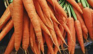 Karottenallergie, Symptome