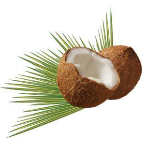 Kokos-Allergie