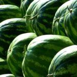 Wassermelonen Allergie
