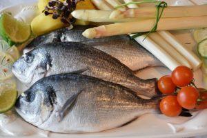 Fischallergie