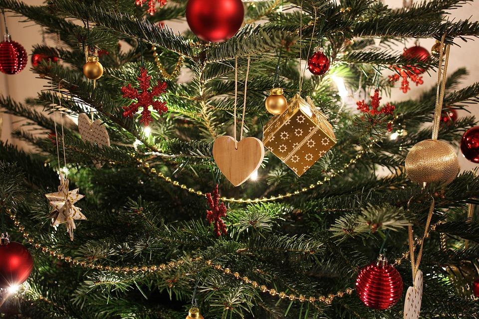 Tannen Allergie, Weihnachtsbaum