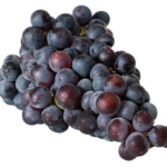Weintrauben Allergie