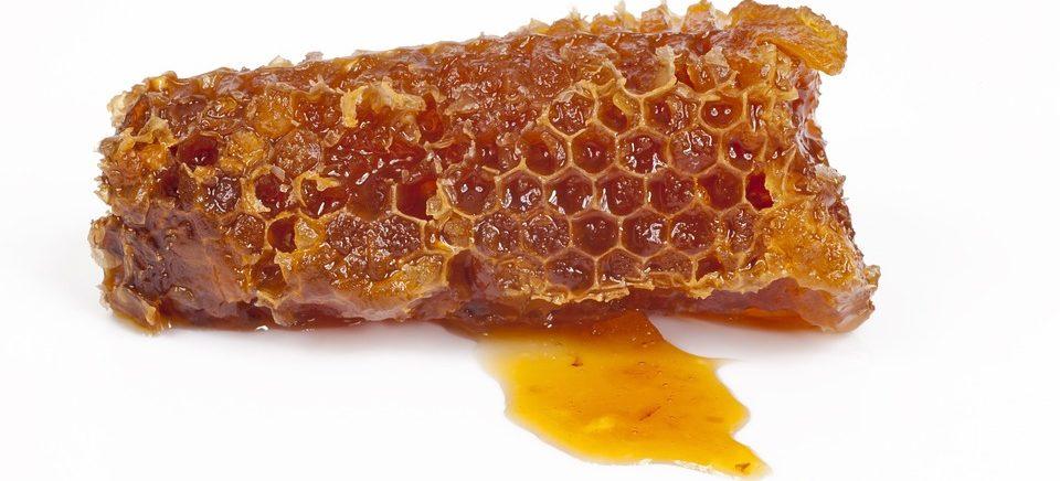 Honigallergie, Honigwabe